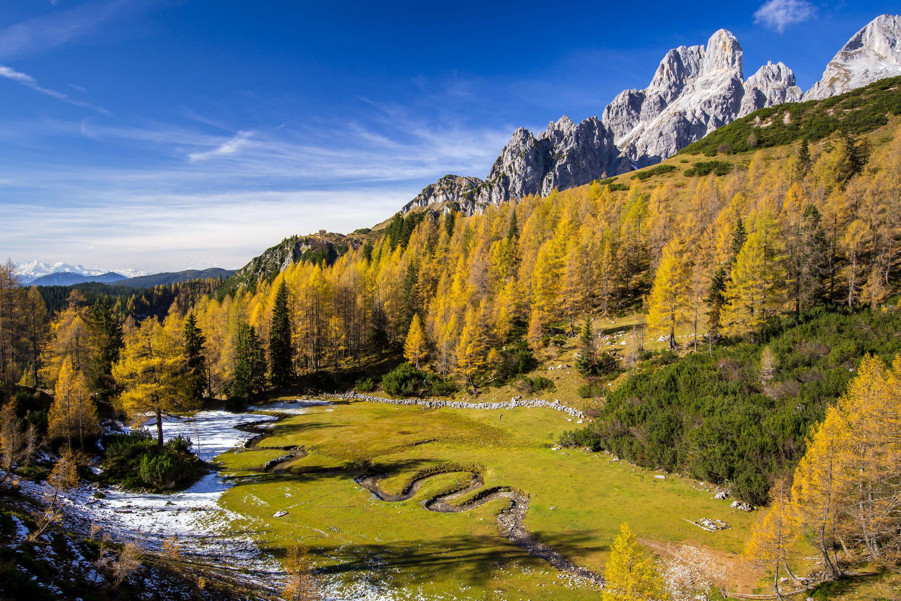 die besonderen Tage im goldenen Herbst
